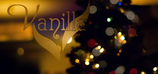A photo of the door at Vanilla Lounge, decorated for Christmas.