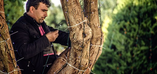 A photo of a man wrapping holiday lights around a tree in Antalya.